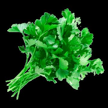 Зелень петрушки (3г)
